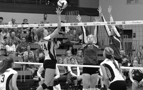Volleyball continues on hot streak