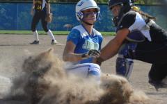 Softball 2015