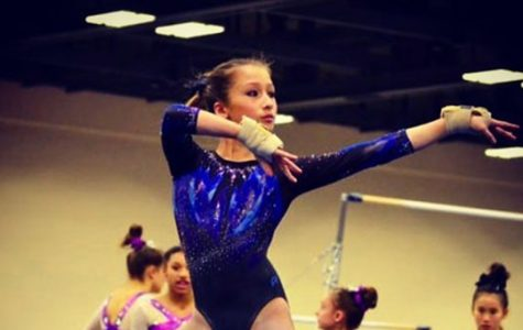 Sophomore thrives in gymnastics