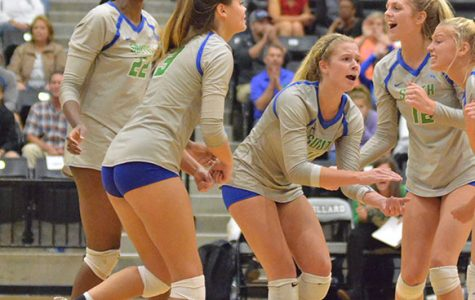 Volleyball season ends in state quarterfinals