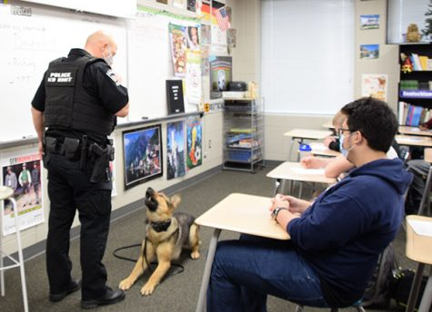 Ado, a German shepherd, waits for his partner, resource office Russell Berry, to give him a command during a demonstration in a South class. Ado and Berry joined South earlier this semester. Photo by Sonnie Hernandez.